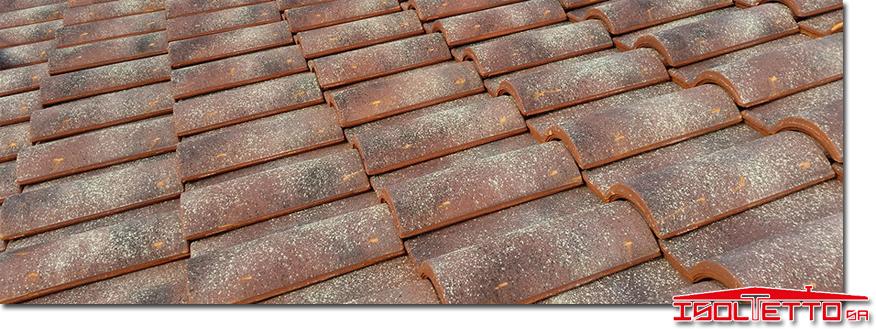 Rifacimento del tetto Chiasso